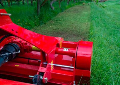 Heavy duty multi-purpose flail mower leaves a trail of clump free mulched grass